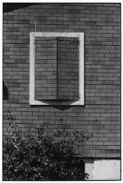 """NELU SAVII-  """"De câte ori deschid fereastra, de-atâtea ori o închid""""(foto-Elliott Erwitt)"""