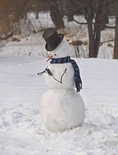 10 poze cu oameni de zăpadă amuzanți (4). Miercurea fără cuvinte (364)